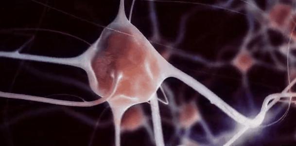 realite-virtuelle-metier-cerveau