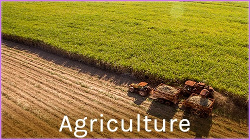 https://metiers360.com/agriculture/